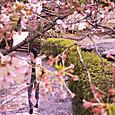 Oshi8646_02