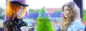 Alicelink